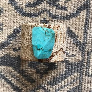 Python and turquoise bangle